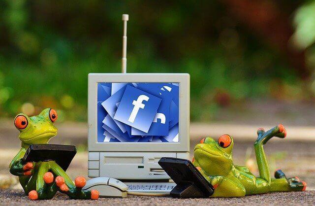 מדיניות פייסבוק לגבי בוטים